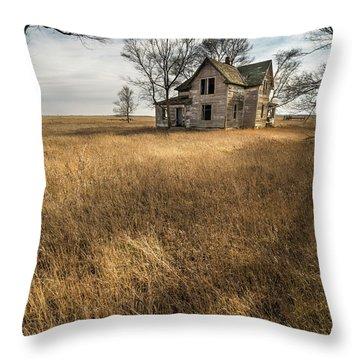 Golden Prairie  Throw Pillow by Aaron J Groen