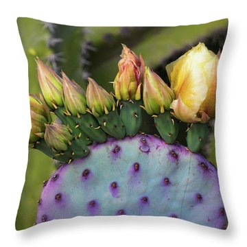 Throw Pillow featuring the photograph Golden Prickly Pear Buds  by Saija Lehtonen