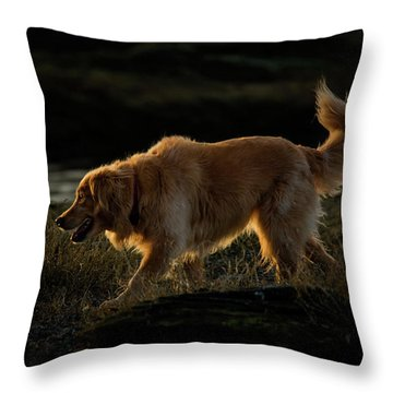 Throw Pillow featuring the photograph Golden by Randy Hall