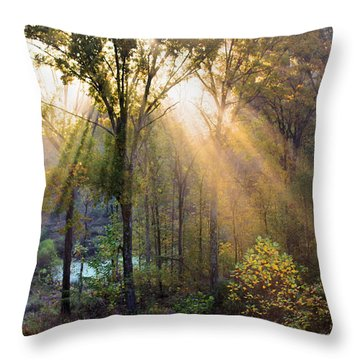 Golden Rays Throw Pillow by Kristin Elmquist