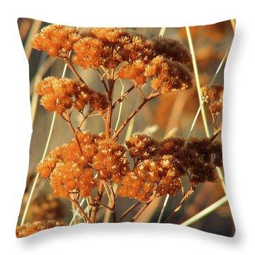 Golden Reach Throw Pillow