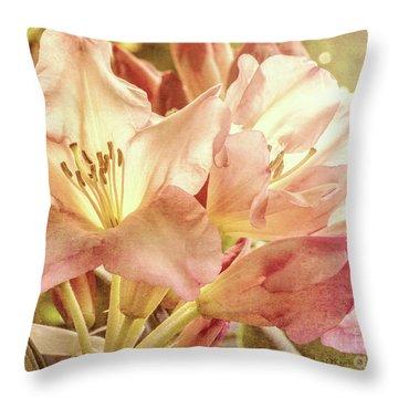 Golden Reserve Throw Pillow