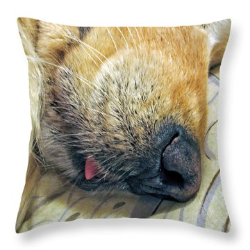 Golden Retriever Dog Little Tongue Throw Pillow by Jennie Marie Schell