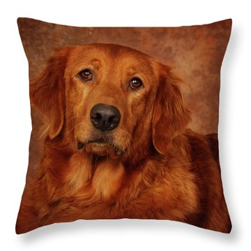 Throw Pillow featuring the photograph Golden Retriever by Greg Mimbs