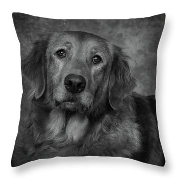 Golden Retriever In Black And White Throw Pillow by Greg Mimbs
