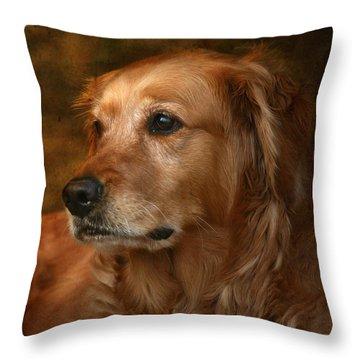 Golden Throw Pillows