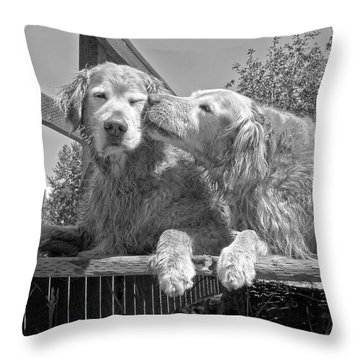 Golden Retrievers The Kiss Black And White Throw Pillow
