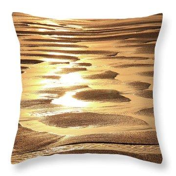 Golden Sands Throw Pillow by Roupen  Baker