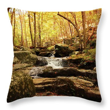 Golden Serenity Throw Pillow by Rebecca Davis