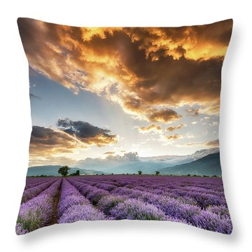 Golden Sky, Violet Earth Throw Pillow by Evgeni Dinev