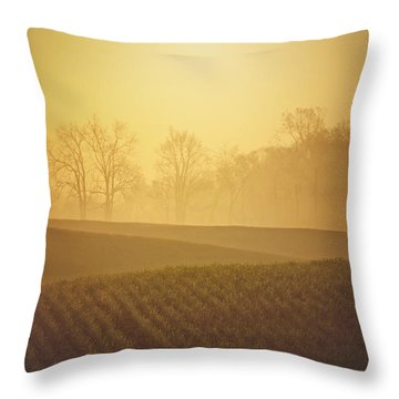 Golden Song Throw Pillow