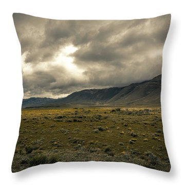 Throw Pillow featuring the photograph Golden Storm by Andrew Matwijec