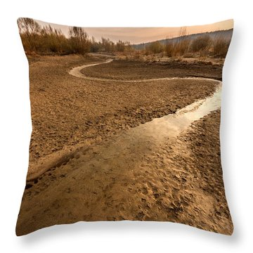 Throw Pillow featuring the photograph Golden Stream by Davorin Mance