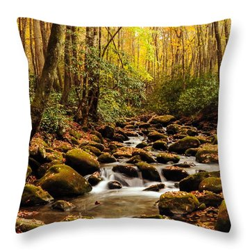 Throw Pillow featuring the photograph Golden Stream In The Great Smoky Mountains by Debbie Green