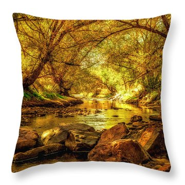 Golden Stream Throw Pillow