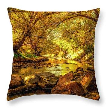Golden Stream Throw Pillow by Kristal Kraft