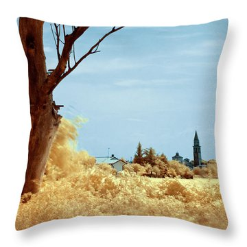 Throw Pillow featuring the photograph Golden Summer by Helga Novelli