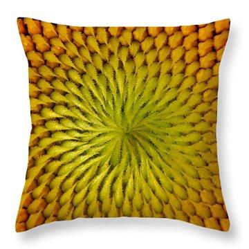 Throw Pillow featuring the photograph Golden Sunflower Eye by Chris Berry