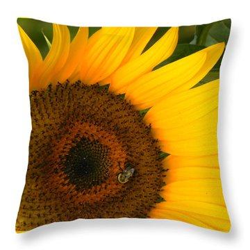 Golden Sunflower Throw Pillow by Rosalie Scanlon