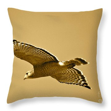 Golden Sunlight On Hawk Throw Pillow by Carol Groenen