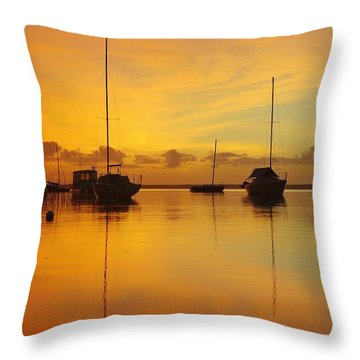Golden Sunrise At Boreen Point Throw Pillow