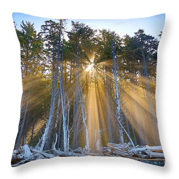 Golden Sunrise Throw Pillow by Martin Konopacki