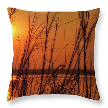 Golden Sunset At The Lake Throw Pillow