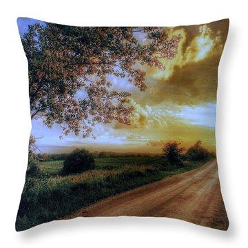 Golden Sunset Throw Pillow by Dustin Soph