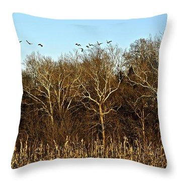 Golden Sycamores Throw Pillow