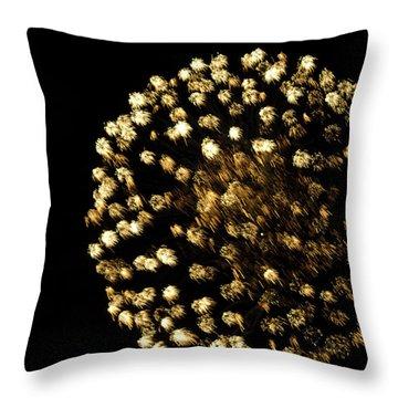 Throw Pillow featuring the photograph Golden by Tara Lynn