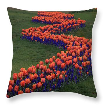 Throw Pillow featuring the photograph Golden Thread by Peter Simmons