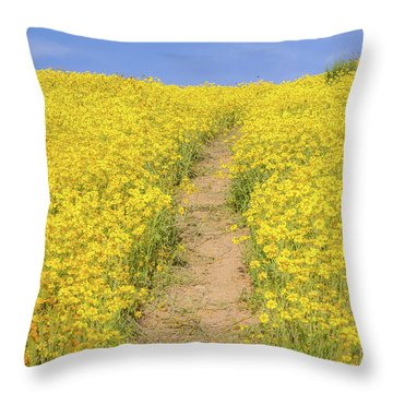 Throw Pillow featuring the photograph Golden Trail by Marc Crumpler