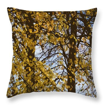 Golden Tree 2 Throw Pillow by Carol Lynch