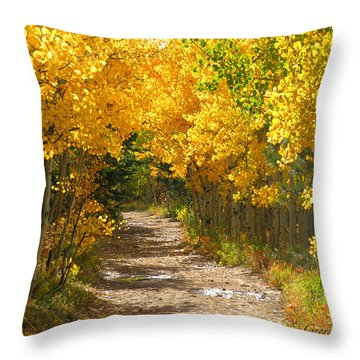 Golden Tunnel Throw Pillow