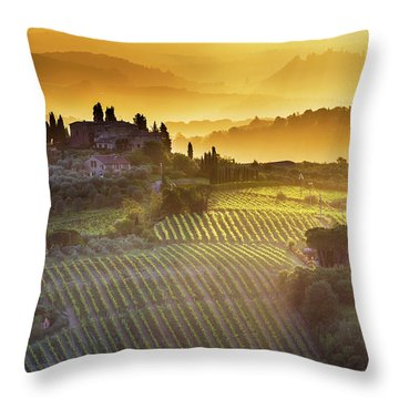 Golden Tuscany Throw Pillow by Evgeni Dinev