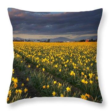 Golden Under The Storm Throw Pillow