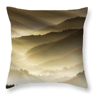 Golden Valley Throw Pillow by Evgeni Dinev