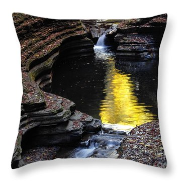 Golden Water Throw Pillow by Vilas Malankar