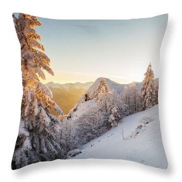 Golden Winter Throw Pillow by Evgeni Dinev