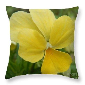 Golden Yellow Flower Throw Pillow