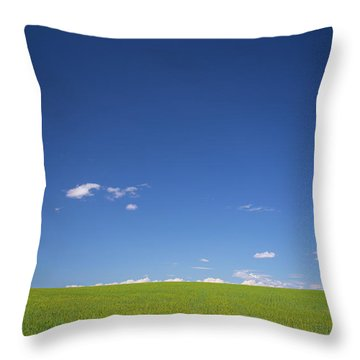 Golden Yellow Of Big Wheat Field,meadows And Closeup Seed With B Throw Pillow