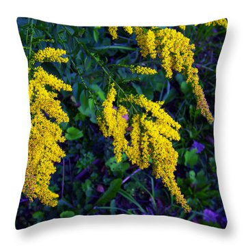 Throw Pillow featuring the photograph Goldenrod by Shawna Rowe