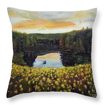 Goldenrods On Davenport Lake-ellijay, Ga  Throw Pillow