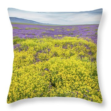 Throw Pillow featuring the photograph Goldfield And Phacelia by Marc Crumpler