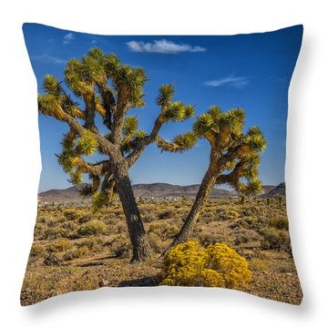Throw Pillow featuring the photograph Goldfield Nv From Gem Field Rd by Janis Knight