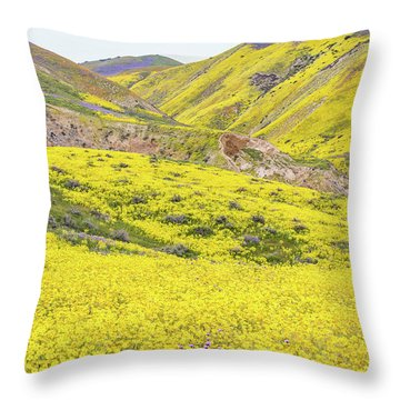 Throw Pillow featuring the photograph Goldfields And Temblor Hills by Marc Crumpler