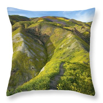 Goldfields Hike Through The Superbloom In The Temblor Range Of T Throw Pillow