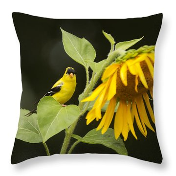 Goldfinch On Sunflower Throw Pillow