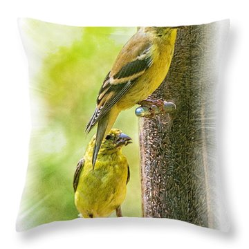 Goldfinches Throw Pillow by Constantine Gregory