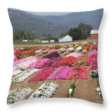Goldsmith Seed Company Throw Pillow